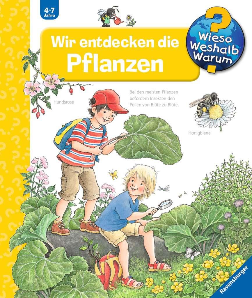 Wir entdecken die Pflanzen